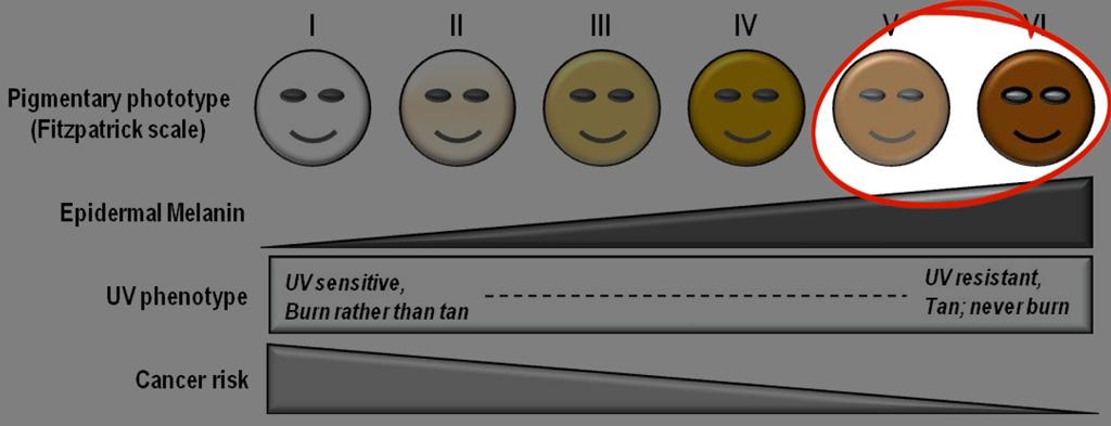 Fitzpatrick Skin Type V and VI